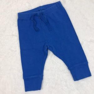 Baby GAP Favorites Royal Blue Joggers